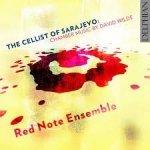The Cellist Of Sarajevo: Chamber Music By David Wilde (2CD)