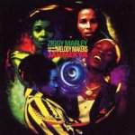 Ziggy Marley And The Melody Makers - Jahmekya (CD)