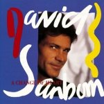 David Sanborn - A Change Of Heart (CD)