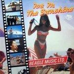 Beagle Music Ltd. - Ice In The Sunshine (12'')
