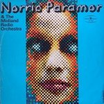 Norrie Paramor & The Midland Radio Orchestra - Norrie Paramor & The Midland Radio Orchestra (LP)