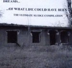 Dreams Of What Life Could Have Been (CD)