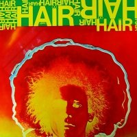 Hair (LP)