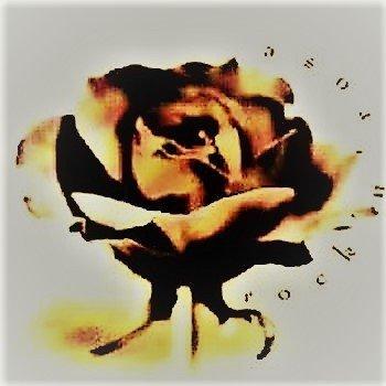 Rock'n'Rose (3CD)
