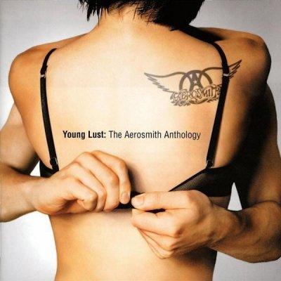 Aerosmith - Young Lust: The Aerosmith Anthology (2CD)