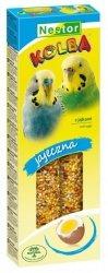 Nestor Kolba Papuga mała jajeczna 2szt