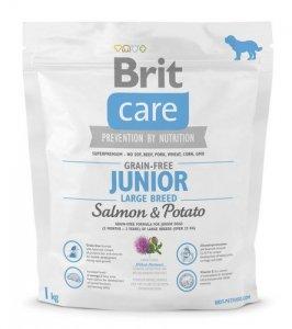 Brit Care Junior Large Salmon and Potato 1kg