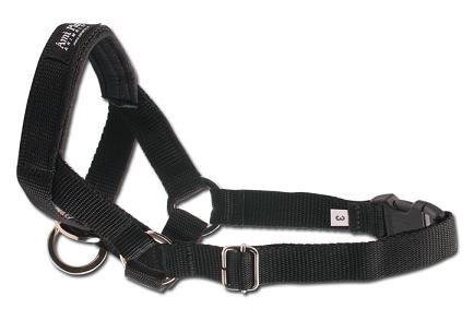 Amiplay Halter L N4 Labrador czarny
