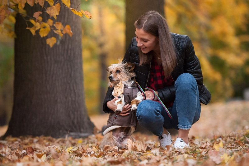 ANIMAL DESIGN Kurtka dla psa Misie Czarne 32cm