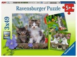 Puzzle 3x49 Kocięta