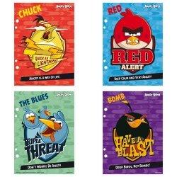 Wkłady do segregatora A5 Angry Birds 10 sztuk mix