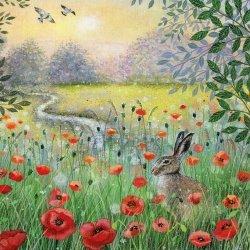 Karnet kwadrat z kopertą Hare and Poppies