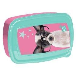 Śniadaniówka Studio Pets chihuahua w okularach