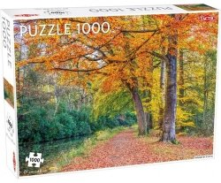Puzzle Pathway by a canal 1000