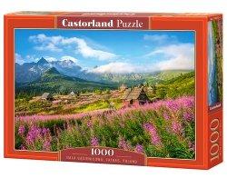 Puzzle Hala Gąsienicowa, Tatras, Poland 1000