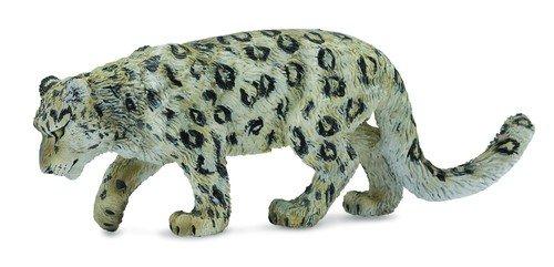 Leopard śnieżny