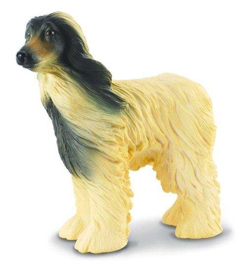 Pies chart afgański