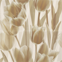 Coraline Panel Tulipany 60x60