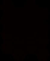 Mozaika Nero Hexagon 22x25,5