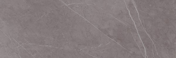 Light Marquina Dark Grey 24x74