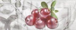 CERAMIKA KOŃSKIE Napoli fruit 1 inserto 20x50 G1. szt