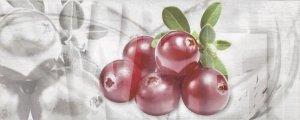 CERAMIKA KONSKIE napoli fruit 1 inserto 20x50 szt g1