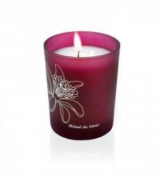 Phyto - armotatic candle/Fito-zapachowa świeczka. Rytuał z Syjamu