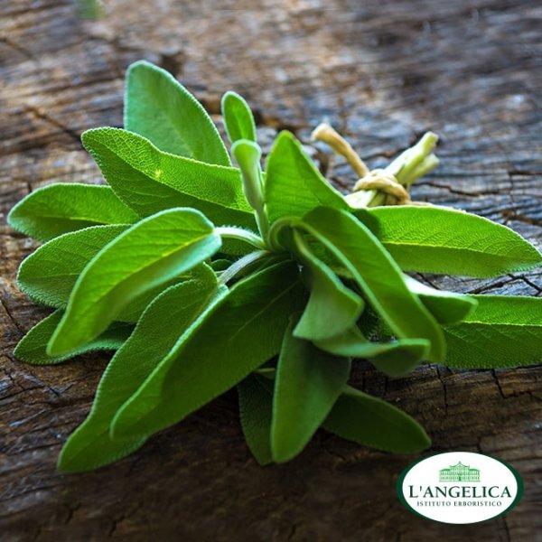 L'Angelica Naturalnie wybielająca pasta do zębów bez fluoru 75ml