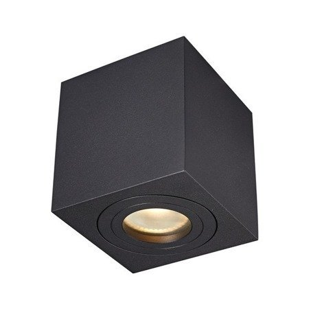 LAMPA WEWNĘTRZNA IP44 (SPOT) ZUMA LINE QUARDIP SL SPOT ACGU10-161