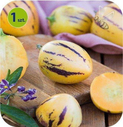 Mini Melon Copa 1 szt.