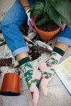 Plant Lover - Ponožky - Many Mornings