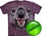 Koala Face - The Mountain