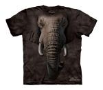 Elephant Face - Junior - The Mountain