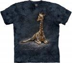Giraffe Calf - The Mountain