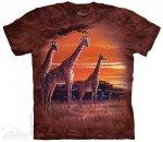 Sundown - The Mountain