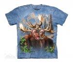Moose Selfie -Junior The Mountain