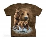 Find 10 Brown Bears The Mountain - Junior