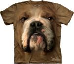 Bulldog Face  - The Mountain