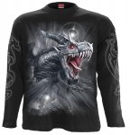 Dragon's Cry - Longsleeve Spiral