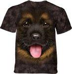 Big Face German Shepherd Puppy  - The Mountain