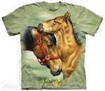 Meadow Horses - The Mountain
