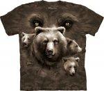 Bear Eyes -  The Mountain