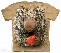 Big Face Baby Porcupine - The Mountain