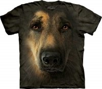 German Shepherd Portrait - Owczarek - The Mountain