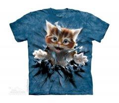Ginger Kitten Breakthrough - The Mountain - Junior