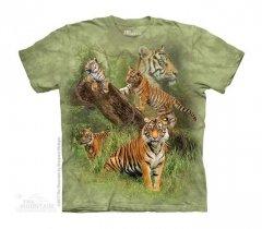 Wild Tiger Collage - The Mountain - Junior