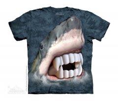 Vampire Shark - The Mountain -Junior
