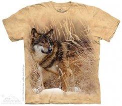 Winter Wolf Portrait - The Mountain
