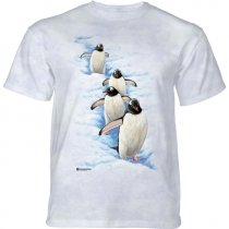 Gentoo Penguins - The Mountain