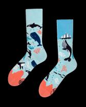 Ocean Life - Ponožky - Many Mornings